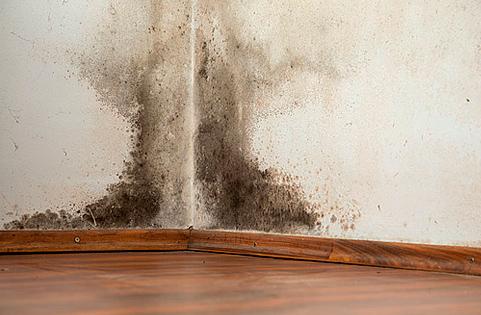 Humedades por condensaci n 2017 tratamientos y soluciones - Como solucionar problemas de condensacion en una vivienda ...